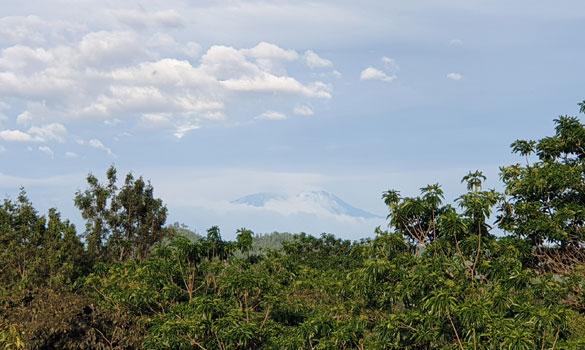 Arusha mit Blick auf den Mount Meru mit seine 4.565 Meter